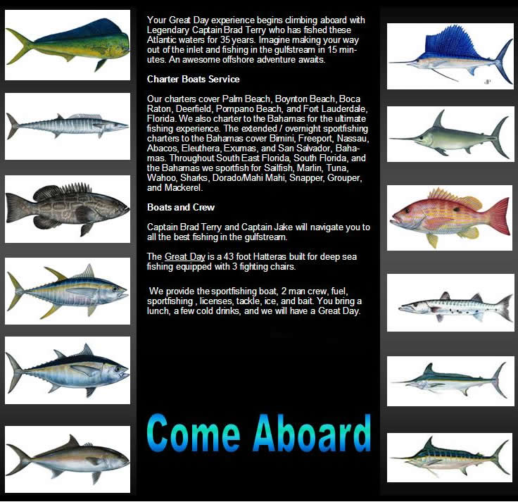 Palm beach sport fishing charters for Delray beach fishing charters
